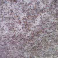 Гниванский гранит коричнево-серый
